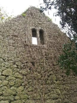 32. Dunfierth Church, Co. Kildare