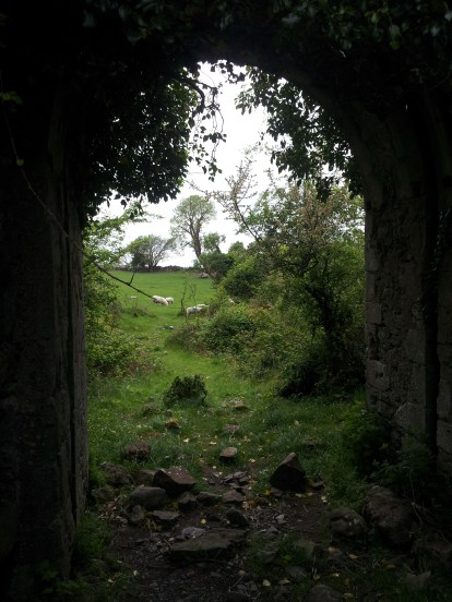 06. Rindoon Abandoned Medieval Town, Co. Roscommon