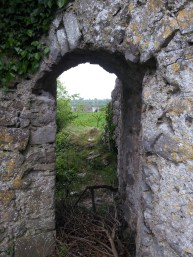 14. Rindoon Abandoned Medieval Town, Co. Roscommon