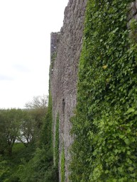 15. Rindoon Abandoned Medieval Town, Co. Roscommon