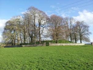 01. Killeen Cormac Burial Site, Co. Kildare