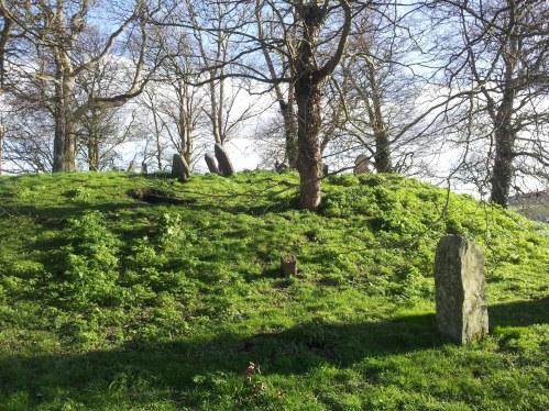 05. Killeen Cormac Burial Site, Co. Kildare