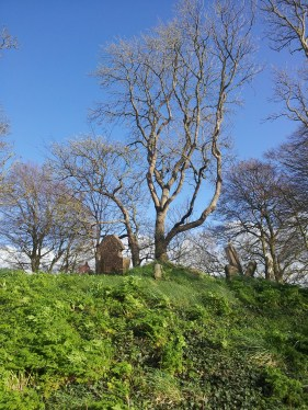 08. Killeen Cormac Burial Site, Co. Kildare