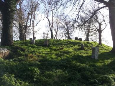 21. Killeen Cormac Burial Site, Co. Kildare