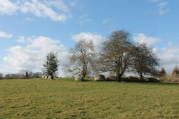 02. Broadleas Stone Circle, Co. Kildare