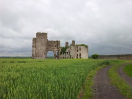 03. Rathcoffey Castle, Co. Kildare
