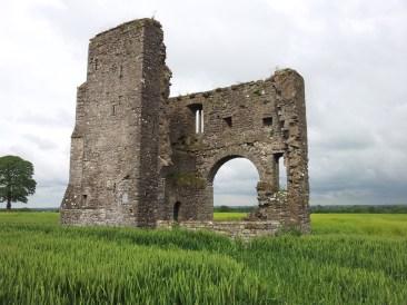 05. Rathcoffey Castle, Co. Kildare