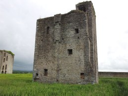14. Rathcoffey Castle, Co. Kildare