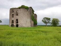 18. Rathcoffey Castle, Co. Kildare