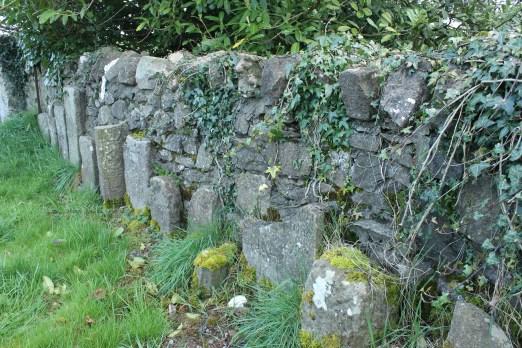 19. Clonenagh Church, Co. Laois
