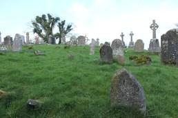 20. Clonenagh Church, Co. Laois