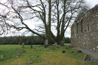 22. Monaincha Church, Co. Tipperary