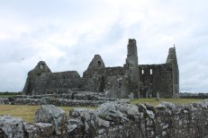 02. Clontuskert Priory, Co. Galway