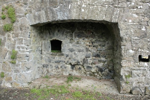 32. Clontuskert Priory, Co. Galway