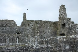 37. Clontuskert Priory, Co. Galway