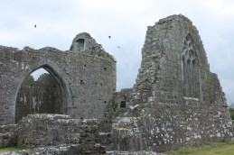 48. Clontuskert Priory, Co. Galway