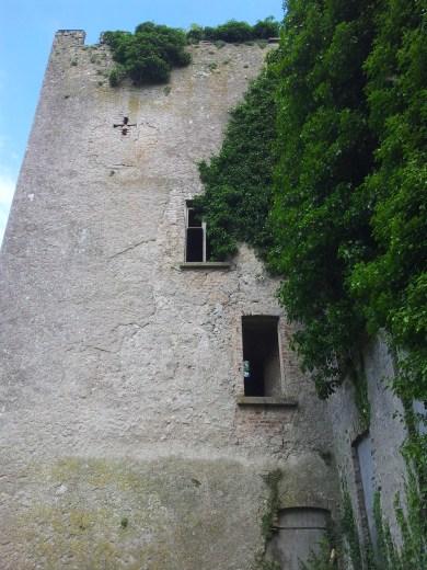 29. Donadea Castle, Co. Kildare