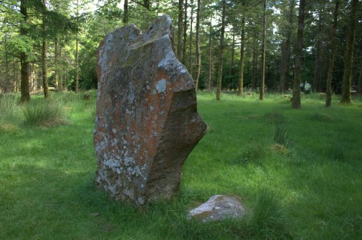 05. Knickeen Ogham Stone, Co. Wicklow