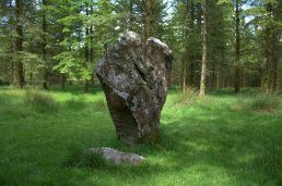 06. Knickeen Ogham Stone, Co. Wicklow