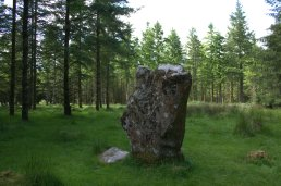 07. Knickeen Ogham Stone, Co. Wicklow