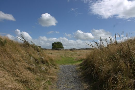 01. Rathgall Hillfort, Co. Wicklow