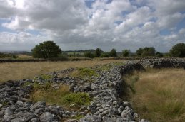 15. Rathgall Hillfort, Co. Wicklow