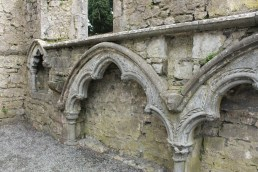 17. St. Mary's Collegiate Church, Co. Kilkenny