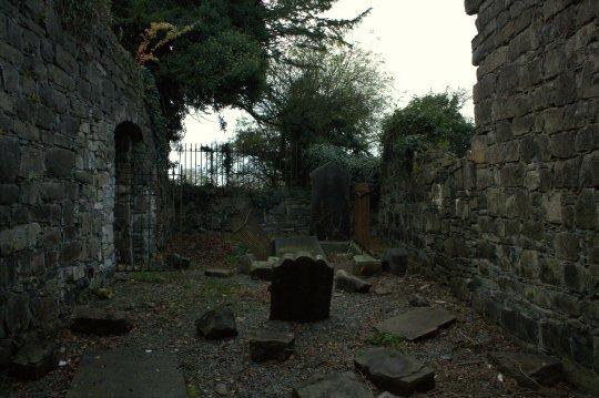 13. Church of St Columba, Co. Kildare