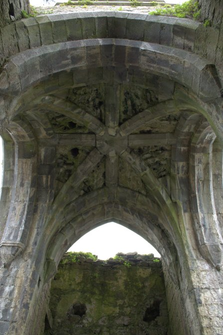14. Claregalway Friary, Co. Galway