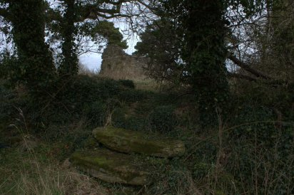 22. Lemanaghan Ecclesiastical Site, Co. Offaly