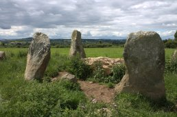 02. Robinstown Great Stone Circle, Co. Wexford