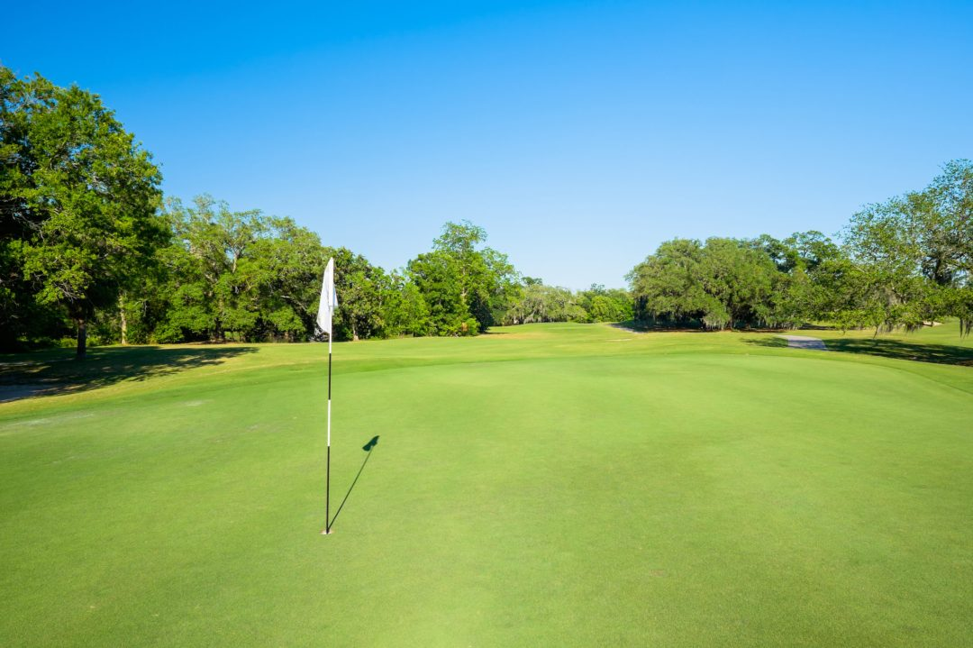 A lone flag is placed in the hole of a green in the foreground. In the background is a fairway lined with trees and a blue sky.