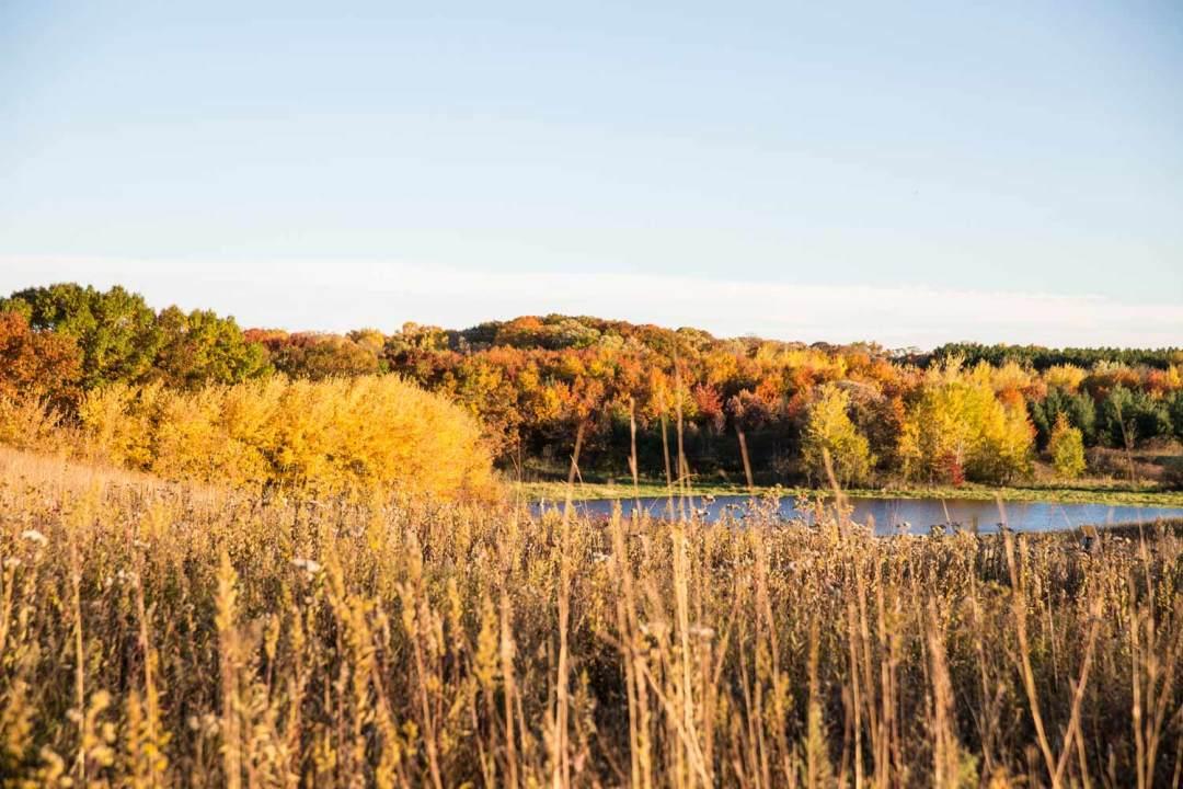 MN Valley Wildlife Refuge