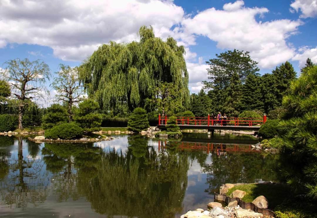 Normandale Japanese Garden Pond