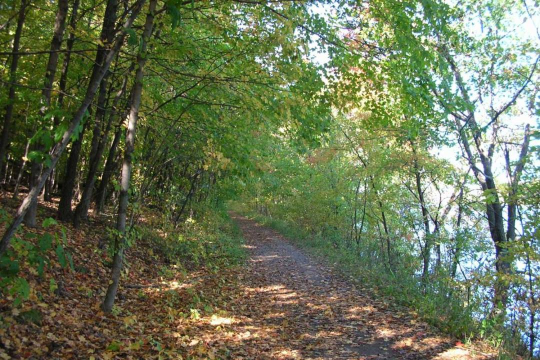 A trail through the woods in Afton State Park. Seven Wonders of the Twin Cities.