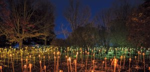 One of artist Bruce Munro's light display installations at the Minnesota Landscape Arboretum.