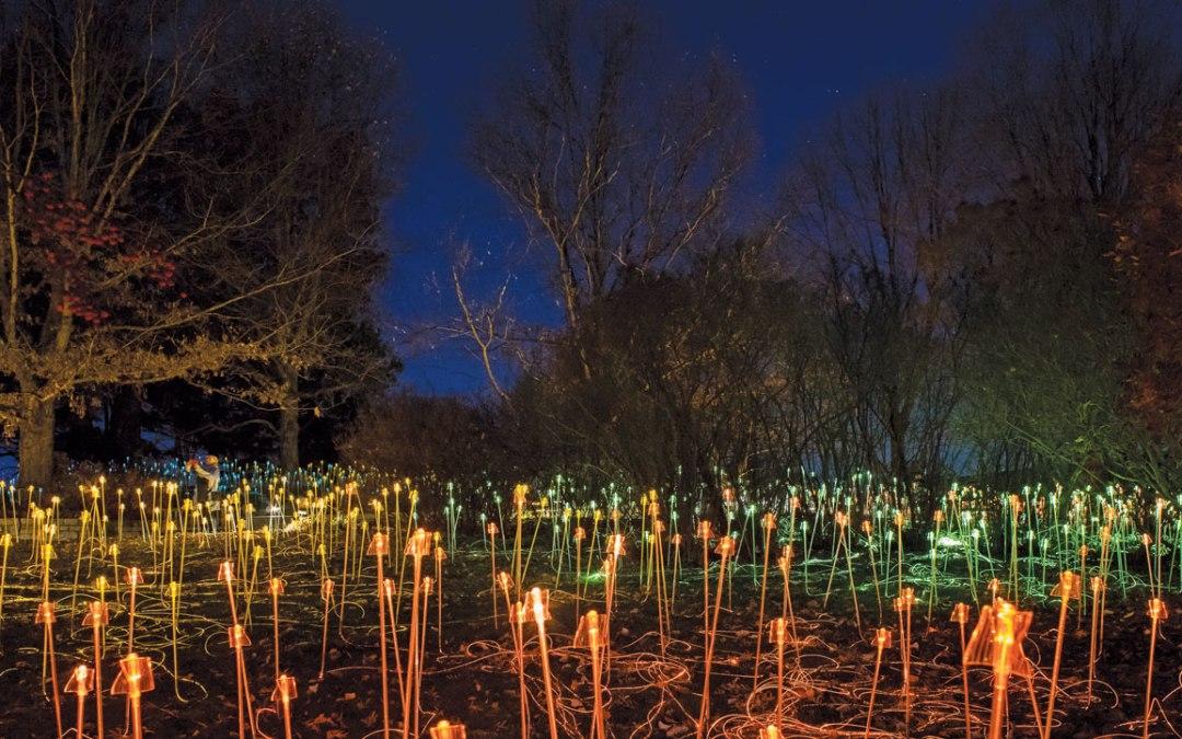 Winter Activities at the Minnesota Landscape Arboretum