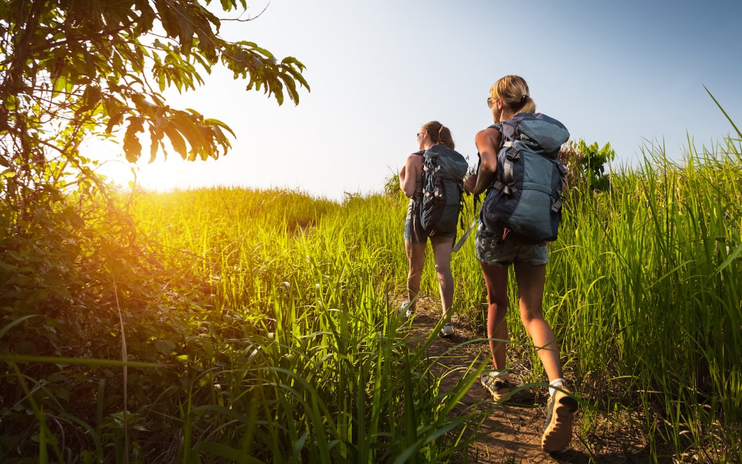 Top 6 St. Paul Hiking Trails