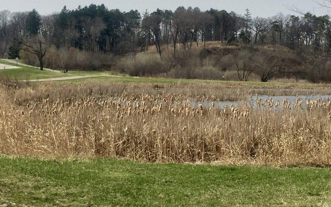 Sensational State Parks: Theodore Wirth Park