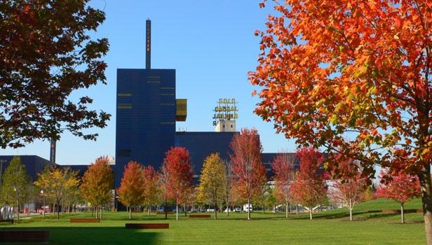Downtown Minneapolis' Gold Medal Park
