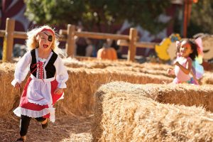 A girl dresses as a pirate and a girl dressed as a fairy are running through a corn maze at ValleySCARE, one of the many fall festivals in the Twin Cities.