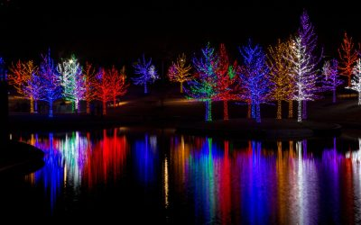 Cheery and Bright: Holiday Light Displays