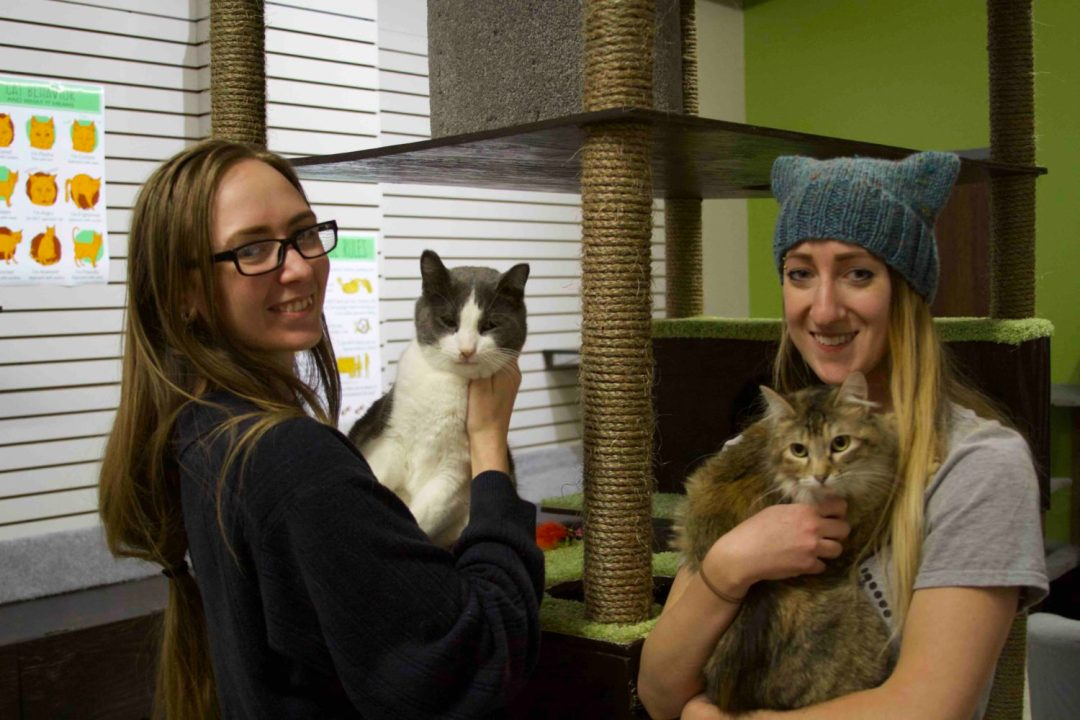 Co-founders Danielle Rasmussen and Jessica Burge, The Cafe Meow