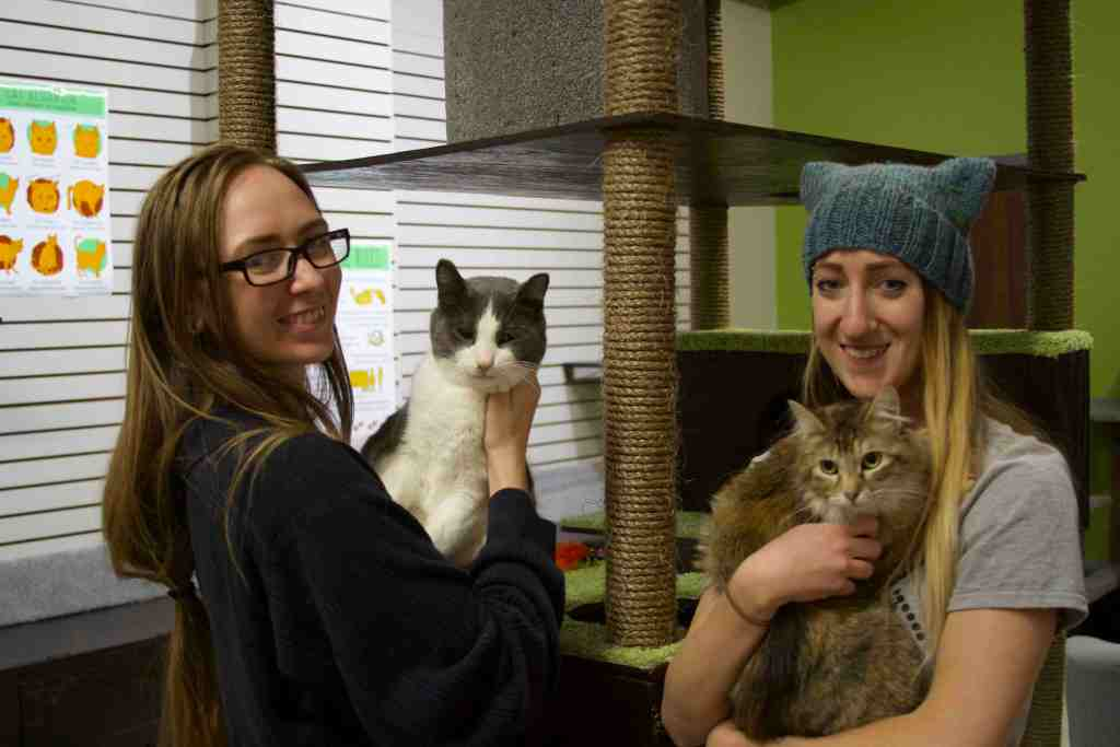 Co-founders Danielle Rasmussen and Jessica Burge smile with their cats at The Cafe Meow.