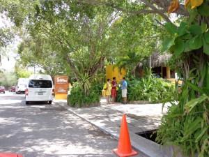 Nuevo Vallarta / Flamingos: Vallarta Adventures tour company in Nuevo Vallarta Mexico