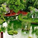 Melia Puerto Vallarta - Garden2