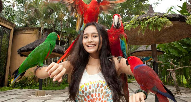 Bali Animals Tour