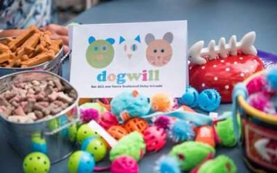 Dogwill