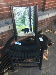 """Black Bear Near Black Balsam"" - David Nelson"