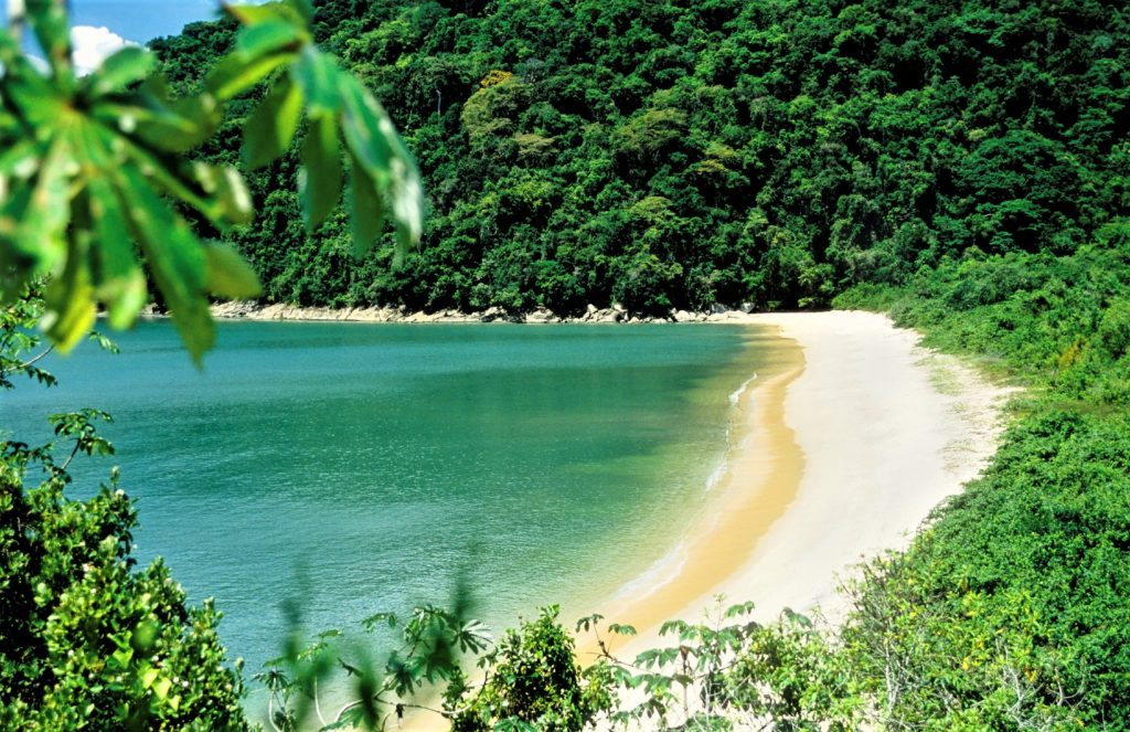 """""""Inlet in the region of Paraty on the south coast of Rio de Janeiro, Brazil"""""""